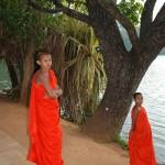 Young Buddha's